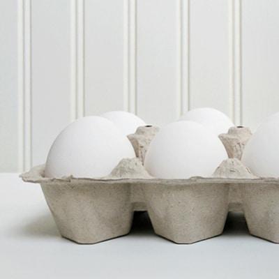 egg_detail-1